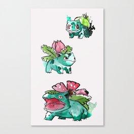 Grass starters Gen 1 Canvas Print