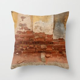 Broken old Wall Throw Pillow