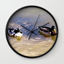 Ducks floating together Wall Clock