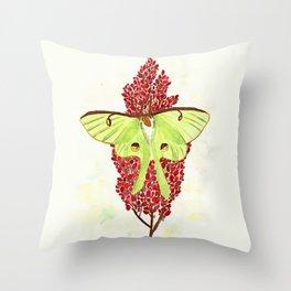 Luna Moth On Sumac Throw Pillow