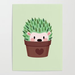 Hedgehogs disguised as cactuses Poster