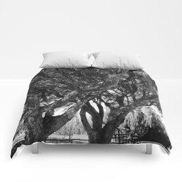 Dressage #5 Comforters