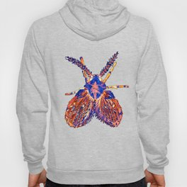 Drain Fly Inverted Hoody