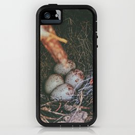 Hidden Gems • Appalachian Trail iPhone Case