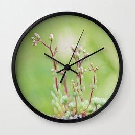 Nature simplicity Wall Clock
