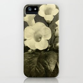 GLOXINIA HER MAJESTY, SNOW WHITE iPhone Case