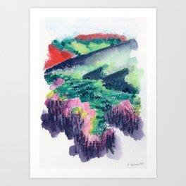 Buffalo Wildflowers - 10 Art Print