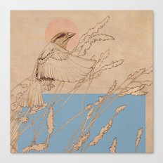 Myshkin Sparrow Canvas Print