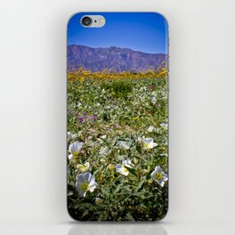 Superbloom Field in the Anza Borrego Desert Filled with Flowers iPhone Skin