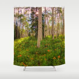 Crested Butte, Kebler Pass in Spring - Panorama by OLena Art for #society5 Shower Curtain