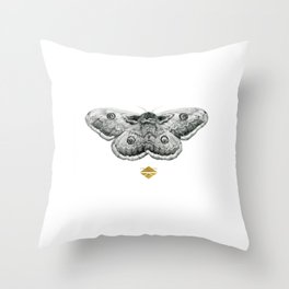 Perseverance - Moth Graphite Drawing by Brooke Figer Throw Pillow