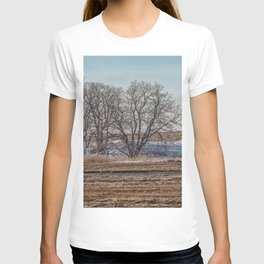 Winter Marsh Landscape T-shirt