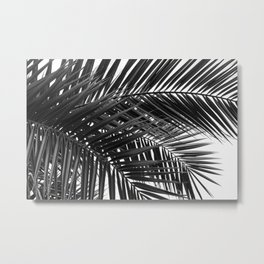 Tropical Palm Leaves - Black and White Nature Photography Metal Print