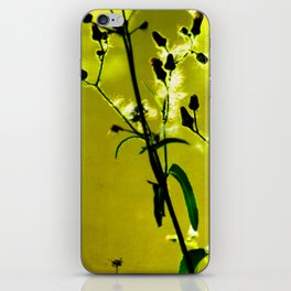 Kissed by the Sun 2 iPhone Skin