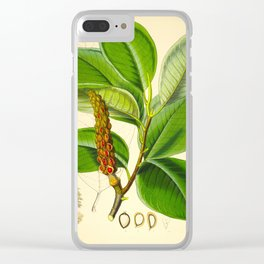 Himalayan botanical Illustrations Floral Pants Vintage Scientific Drawing Clear iPhone Case