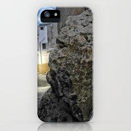 010 iPhone Case