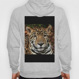 Belizean Jaguar Photograph Hoody