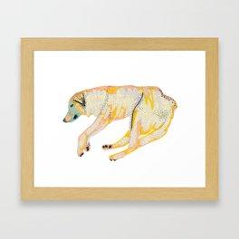 Koh Tao Dog Framed Art Print