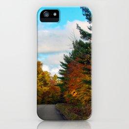 Katahdin Foliage (4) iPhone Case