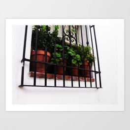 Whitewashed Walls Art Print