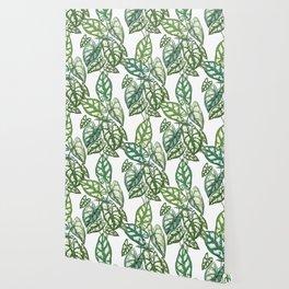Green tropical leaves IV Wallpaper