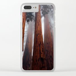 Tall Redwood Trees Clear iPhone Case