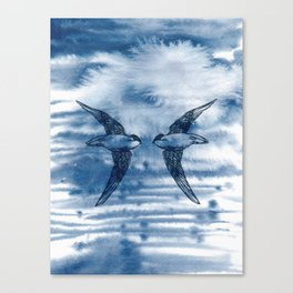 Swift Pair Canvas Print