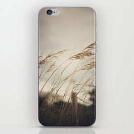 Wild Oats to Sow iPhone Skin
