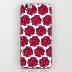 Rose garden iPhone & iPod Skin