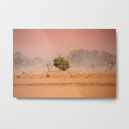 NAMIBIA ... through the storm III Metal Print