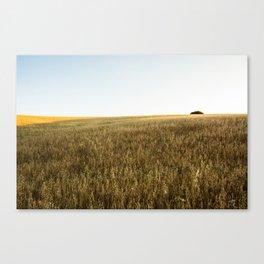 Ocaso en el Campo Canvas Print