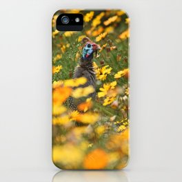 southafrica ... flowers, flowers and a guineafowl iPhone Case