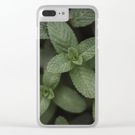 Mint at a desert farm in The Negev, Israel Clear iPhone Case