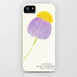 Botanical Sketches 3: East Indies Aster iPhone Case