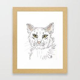 Anger cat lady Framed Art Print