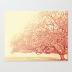 tree. That Was Just a Dream. pink tree photograph Canvas Print