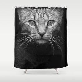 cat katz black white 4 Shower Curtain