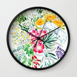 Watercolor medicinal herbs Wall Clock