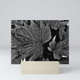 Sugar Maple Leaves Mini Art Print