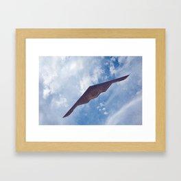 Stealth Bomber Framed Art Print