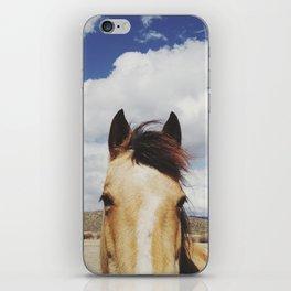 Cloudy Horse Head iPhone Skin