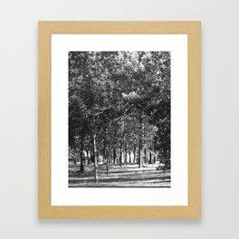 Black-and-White Woods Framed Art Print