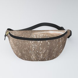 Fountain Fanny Pack