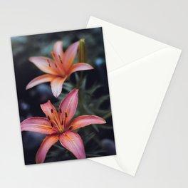 Backyard Flowers (4) Stationery Cards
