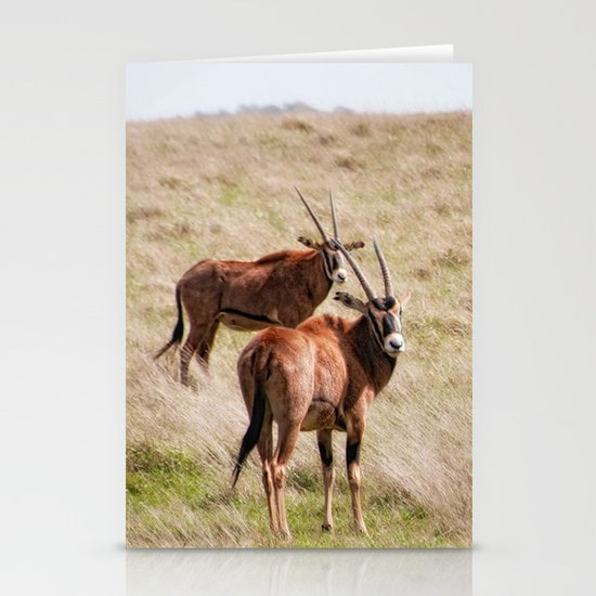 Wide open spaces Stationery Cards