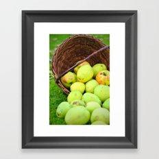 Spilled apples Framed Art Print