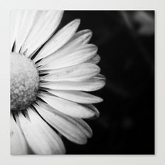 Black and White Flower Macro photography monochromatic photo Canvas Print