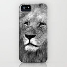 Masai Mara Lion iPhone Case