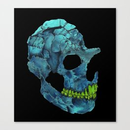 001 Canvas Print