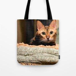 Did You Knock? Tote Bag